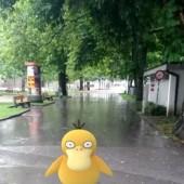 Arbö warnt vor Pokémon im Straßenverkehr