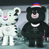 Tiger und Bär für Pjöngjang 2018