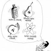 Kern-Steuer-Ideen!