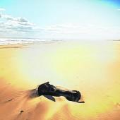 Kilometerlange Sandstrände