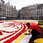 Gigantischer Blumenteppich