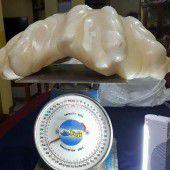 Schwerste Perle der Welt wiegt 34 Kilo