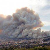 Vier Todesopfer bei Waldbrand auf Madeira