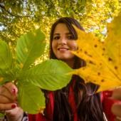 Der Herbst lädt zum Verweilen im Freien ein