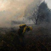 Waldbrände wüten in  Portugal und Spanien