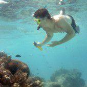 Millionen für Schäden am Great Barrier Reef