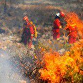 Waldbrände an Costa Blanca unter Kontrolle