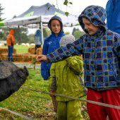 Tierfest als nasse Angelegenheit