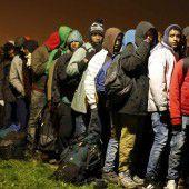 Illegales Lager geräumt