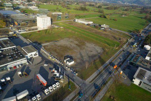 """Die Eigentümerin des derzeit unbebauten """"Ikea-Grundstücks"""", die Gemeinde Lustenau, will nicht an die Firma Haubner (im Bild links) verkaufen. VN/hartinger"""
