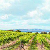 Australiens jüngstes Weinbaugebiet