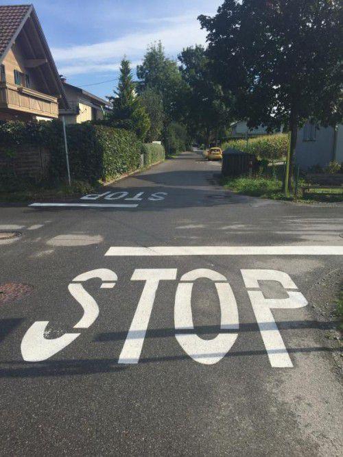 Die Gemeinde Mäder geht das Problem Böckwies an.  VN/pes