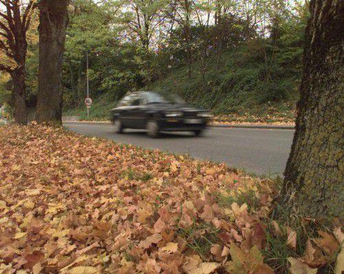 Der Herbst wartet mit zusätzlichen Tücken für den Verkehr. Foto: VN/HB