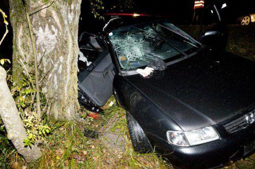 Der Lenker dieses Pkw musste vermutlich einem Tier ausweichen und prallte gegen einen Baum. Fotos: Mathis