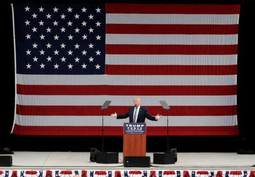Der Milliardär liegt derzeit in mehreren Umfragen hinter seiner Konkurrentin Hillary Clinton. Foto: AP