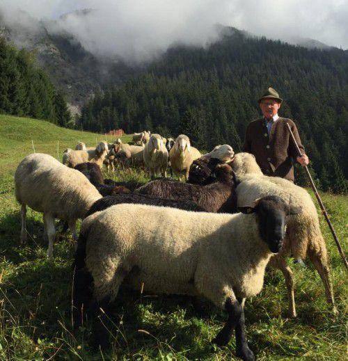 Kurt Mitterlehner mit Schafen.