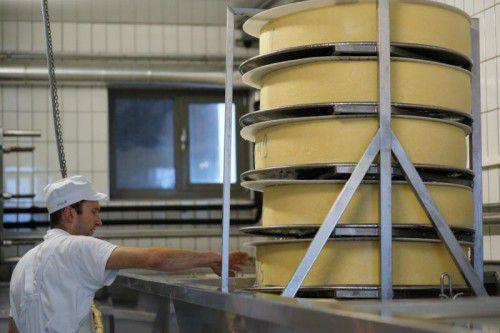 In 26 Betrieben werden landesweit jährlich 147 Millionen Kilogramm Milch verarbeitet. Foto: L. Berchtold