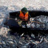 Die Fischer in Vietnam kämpfen ums Überleben