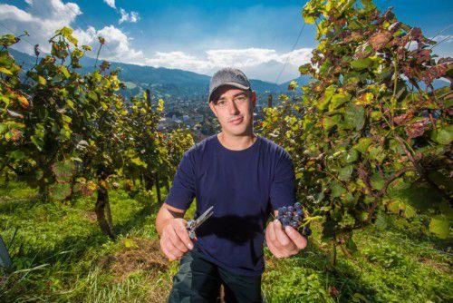 Michael Nachbaur hat letztes Jahr den Familienbetrieb in Röthis übernommen. Fotos: VN/Steurer