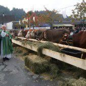 Viehzuchtverein aus Übersaxen  feierte 90 Jahre