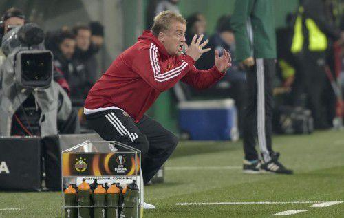 Rapid mit Coach Mike Büskens braucht einen Sieg.  Foto:gepa