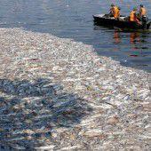 Massensterben bei Fischen in Hanoi