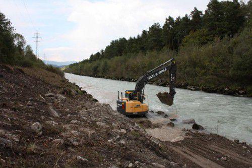 Zwei Winter lang werden die Dämme der Ill stabilisiert und das Flussbett revitalisiert.  Foto: doh
