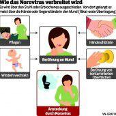 Die Noroviren sind wieder unterwegs