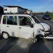 Autofahrer (60) von seinem Hund abgelenkt