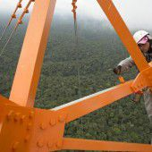 Rekord-Turm im Urwald: Auf der Spur des Klimas
