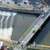 Fukushima-Beben weckt dunkle Erinnerungen