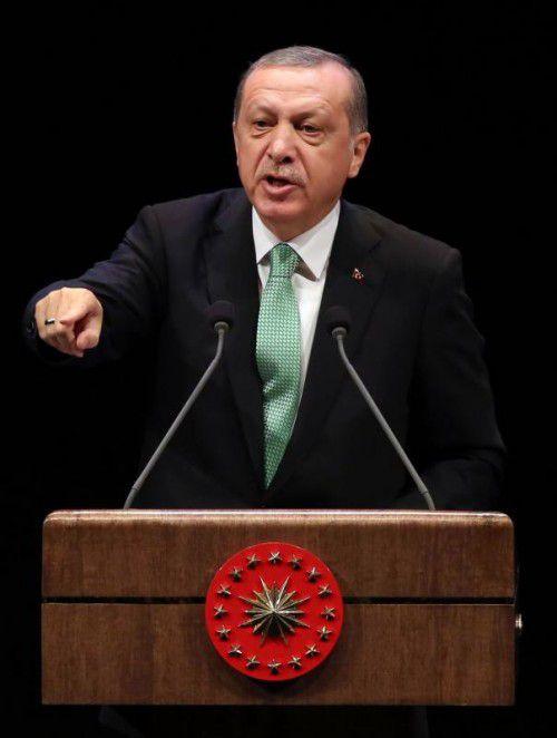 Erdogan ließ zahlreiche Journalisten und Politiker verhaften. APA