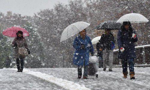 Tokio erlebt den ersten November-Schnee seit 54 Jahren. Foto: AFP