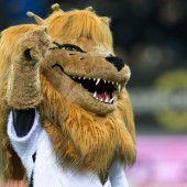 Land freut sich mit Fußball-Helden