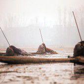 Bedeckte Fischer