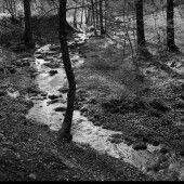 Fotografische Verbeugung vor der Landschaft