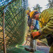 Gefahr mit Stahlnetzen bannen