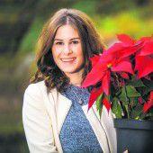 Weihnachtsstern zum Vorteilspreis sorgt für einen blumigen Advent