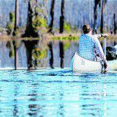 Viel Sumpf und Alligatoren