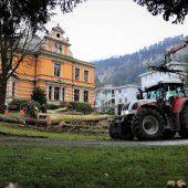 Erkrankte Bäume bei der Villa Claudia gefällt