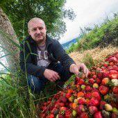 Schweres Jahr für Landwirtschaft