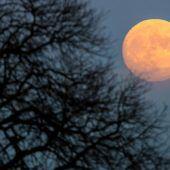 Asteroideneinschläge haben Mond geformt