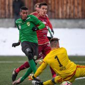 Gut gelaunte Austria siegt gegen Vaduz 3:0