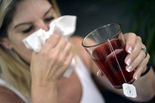 Die weniger Guten unter den Keimen sorgen dafür, dass jetzt wieder literweise Tee und jede Menge Taschentücher gebraucht werden.apa
