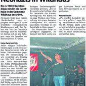 Schweizer verbieten Nazi-Konzert