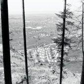 Bremenmahd in Dornbirn