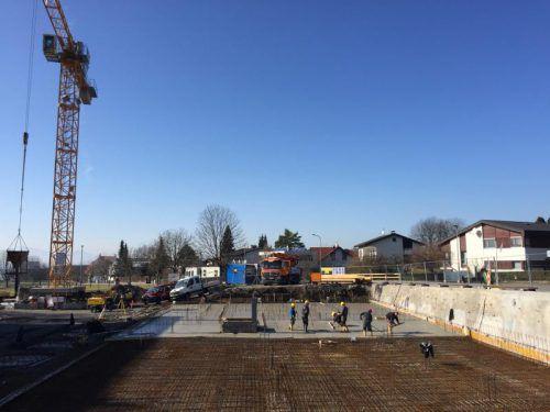 Betonierungsarbeiten an der Baustelle zum neuen Gemeindehaus Lochau am Donnerstag. Foto: VN/pes