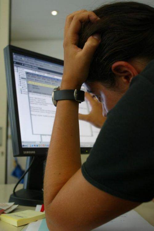 Computerviren können Nutzer zur Verzweiflung führen. Foto: VN/HB