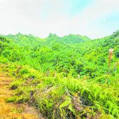 Kalalau Trail: Schön, aber anstrengend