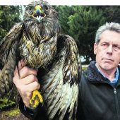 Tierretter Karlheinz Hanni hat derzeit alle Hände voll zu tun
